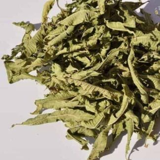Lemon Verbena whole leaf herbal tea infusion